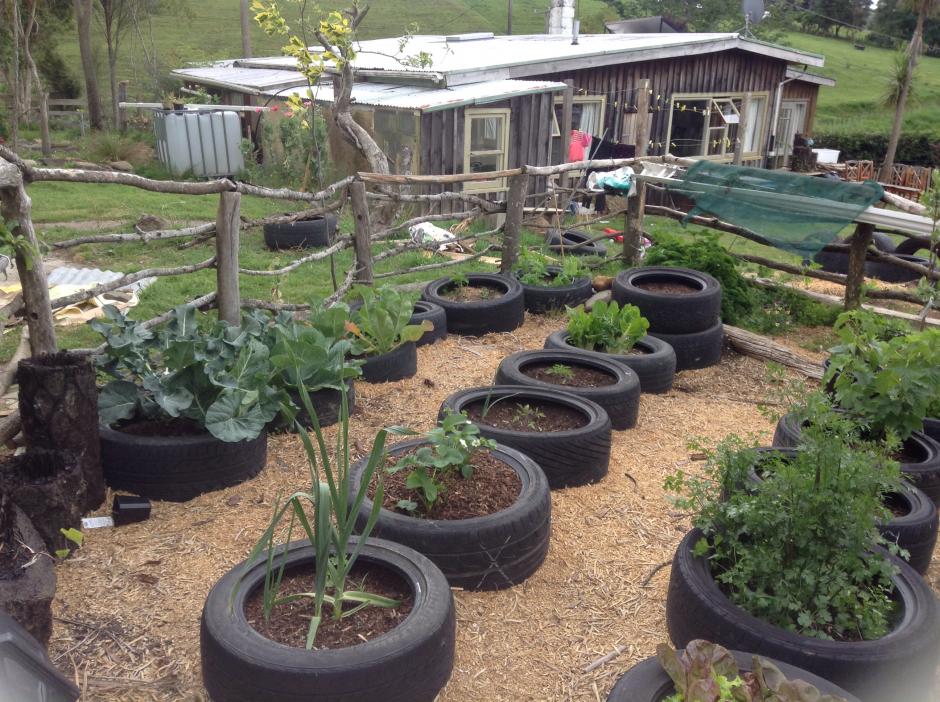 Starting a veggie garden from scratch fasci garden for Designing your garden from scratch